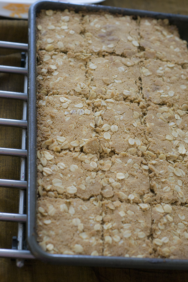 oats-bars-6-blog